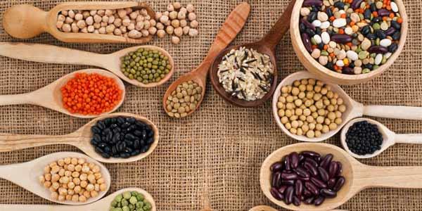 proteine-dieta-vegetariana